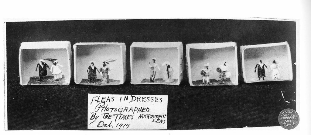 'Fleas in Dresses' Photographed by The Times in 1919